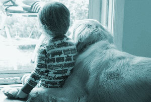 Best-Dog-Breed-For-Children-1