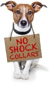 No-Shock-Collars