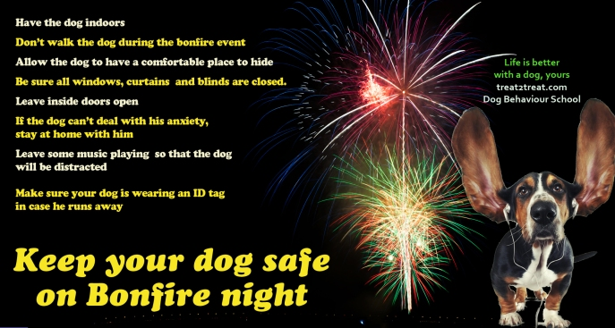 Safety tips for Bonfire night